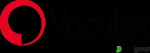 Vaculex Vacuum Lifting Logo
